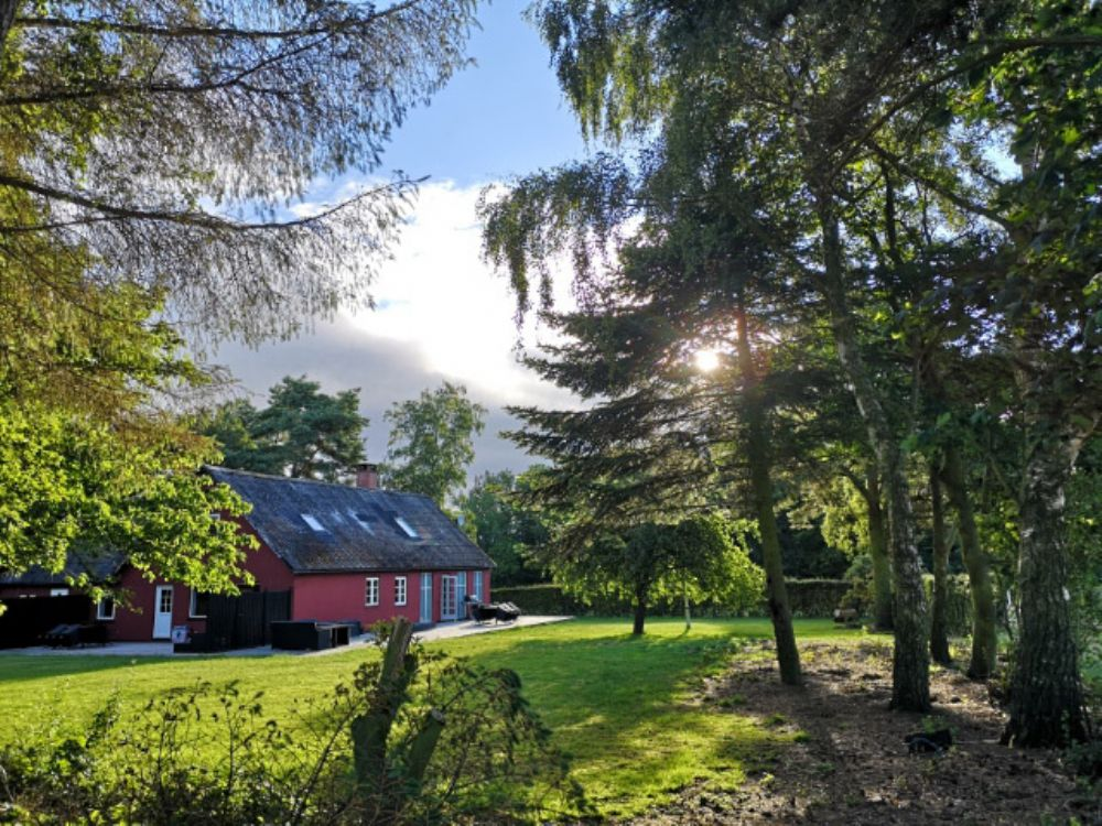 Bed and Breakfast in Dueodde - Bornholm